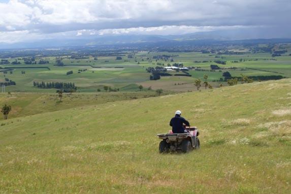 Farming communities Palmerston North